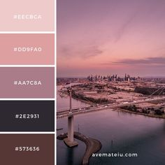Aerial Photography of City Buildings and Bridge Color Palette Color Palettes – Ave Mateiu Check Pantone Colour Palettes, Color Schemes Colour Palettes, Colour Pallette, Color Palate, Pantone Color, Lavender Color Scheme, Adobe Color Palette, Rustic Color Palettes, Brown Color Schemes