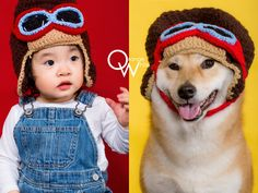 橘子白,攝影,工作室,阿睿,全家福,寵物寫真,毛小孩,我與毛孩的全家福 Pet Photographer, Crochet Hats, Pets, Knitting Hats