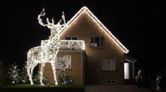 Prangende lys døgnet rundt kan være forstyrrende for de som trenger mørke omgivelser for å få sove. Home, Lily, Ad Home, Homes, Haus, Houses