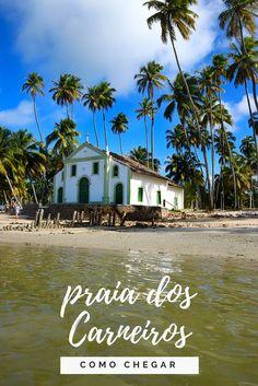Praia dos Carneiros, Pernambuco! Todas as formas de chegar a esse paraíso!   #carneiros #praiadoscarneiros #pernambuco