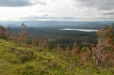 Admire beautiful views across forest and hills, to Loch Morlich. Enjoy such sights in the Cairngorms National Park.