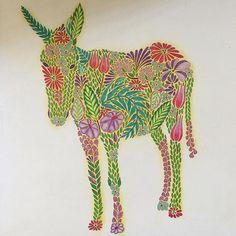 Christmas Donkey #coloringmasterpiece #coloringhabit #coloring_secrets #adultcoloringbook #coloringbookforadults #milliemarotta #animalkingdomcolouringbook