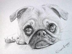 dog hacks,dog tips,dog learning,dog care,dog stuff Custom Dog Portraits, Pet Portraits, Portrait Wall, Animal Sketches, Animal Drawings, Drawing Animals, Pug Art, Dog Memorial, Colorful Drawings