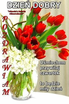 Good Morning, Plants, Motto, Good Morning Funny, Polish, Pictures, Buen Dia, Bonjour, Plant