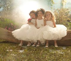 Save The Dress — Disney FairyTale Weddings By ALFRED ANGELO