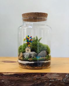This Company Makes Incredible Micro Ecosystems In Pots And You Will Definitely Want One In Your Home Best Terrarium Plants, Terrarium Jar, Garden Terrarium, Glass Containers, Glass Jars, Interior Design Plants, Diy Garden Fountains, Paludarium, Hanging Plants