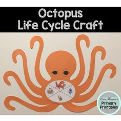 Craft includes: life cycle charts (with and without pictures) body tentacles Elementary Science, Teaching Science, Science Activities, Elementary Schools, Cycle Pictures, Life Cycle Craft, Cut And Paste, Life Cycles, Octopus