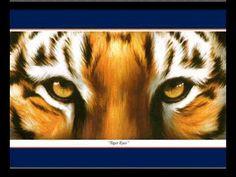 Tiger Eyes...