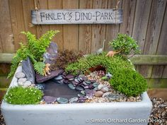 How to create a mini dinosaur garden - Simon Orchard Garden Design