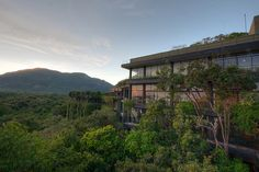 the Kandalama hotel, near Dambulla, Sri Lanka. The hotel was built by Geoffrey Bawa, a famous Sri Lankan architect and is basically built out of a jungle. #hotel #travel #architecture