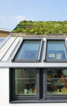GreenROOF - Roof garden system by ISOPAN