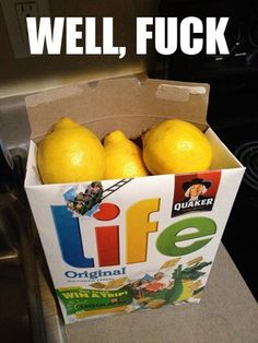 Chuck the lemons right back at life until it gives you the damn oranges you asked for in the first place.