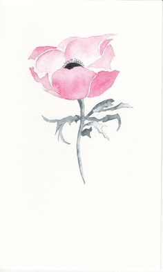 Pink Anemone Watercolour Art Cards A set of 4 Floral Handmade Cards Blank artwork Notecards