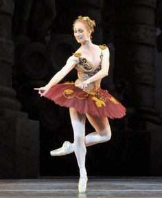 Golden Vine - Royal Ballet