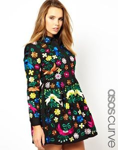 ASOS CURVE Premium Skater Dress with Embroidery