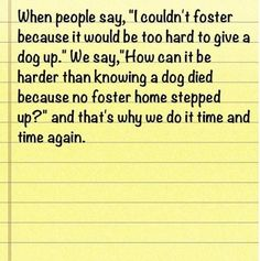 Please foster a dog!  Contact info@cominghomerescue.org