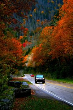 Smoky Mountains in the Fall http://www.pantherknobcottages.com
