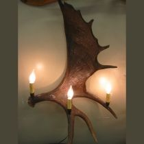 Our 3-Light Moose Antler Sconce.  Made in the USA and no animals ever harmed. http://www.realantlerchandeliers.com/Peak-Moose-Antler-Sconce-3-Light.html