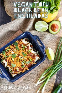 101 recetas para triunfar pdf epub book epub pdf pinterest easy vegan tofu black bean enchiladas forumfinder Choice Image