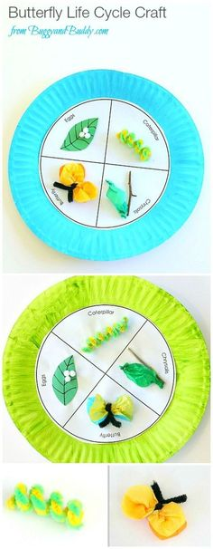 Butterfly Life Cycle Paper Plate Craft Paper Plate Butterfly Life Cycle Craft for Kids (with FREE printable template)- Fun spring and science activity for kids! Kid Science, Science Activities For Kids, Preschool Science, Preschool Kindergarten, Preschool Activities, Spring Activities, Science Experiments, Science Centers, Summer Science