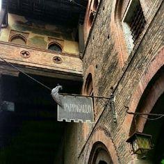 Palazzo della Mercanzia - Instagram by @cinzia_g
