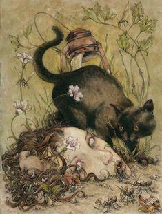 Jeremy Hush ~ Shadowing