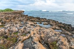 Oahu's North Shore photo by Penny Meyers.  Fine art prints, canvas prints, metal prints, acrylic prints, framed prints, greeting cards, tote bags, shower curtains and more...