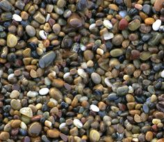 Seamless Wet Pebbles (Maps) | texturise