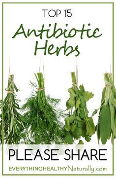 Watch This Video Enticing Become a Natural Holistic Health Practitioner Ideas. Alluring Become a Natural Holistic Health Practitioner Ideas. Natural Health Remedies, Natural Cures, Natural Healing, Herbal Remedies, Natural Treatments, Natural Foods, Cold Remedies, Bloating Remedies, Holistic Healing