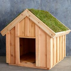Living Roof Dog House #westelm. This is awfully cute. Would make a good, mini duck coop. #MadeinUSA