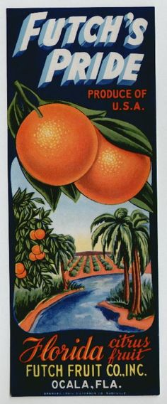 Futch's Pride Florida Citrus Fruit    ✯ ✯ ✯ click the pin to watch a 5 minute video or click here: http://snow.energygoldrush.com  ✯ ✯ ✯   #AmbitEnergy #orange #energygoldrush