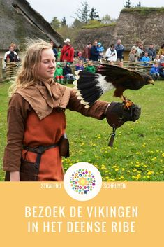 Vikingen in Ribe: Museum Ribes Vikinger en Ribes Vikinge Center/Vikingmarkt Vacation Wishes, Scandinavian Countries, European History, Beautiful Places, To Go, Places To Visit, Museum, Travel, Family Vacations