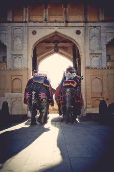 Wanderlust: India