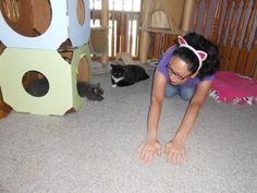 5 Cat Traits I Desperately Wish to Possess | Catster