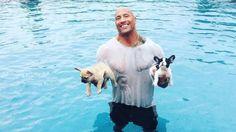 Dwayne Johnson Saves Baby Sept 2015 / French Bulldogs From Drowning https://gma.yahoo.com/dwayne-johnson-saves-baby-french-bulldogs-drowning-133300967--abc-news-celebrities.html