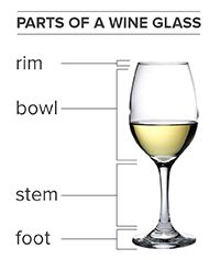 Types of Wine Glasses Wine Glass Images, Types Of Wine Glasses, Wine Facts, Sweet White Wine, Bar A Vin, Wine Education, Wine Tasting Party, Wine Guide, Wine Night