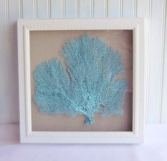 Another aqua sea fan in a shadow box.  Buy two for a set.