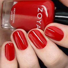Zoya Twinkling Holiday 2019 Collection – Sofia is My Home Green Nail Polish, Zoya Nail Polish, Green Nails, Nail Polish Colors, Red Nail, Nail Polishes, Gradient Nails, Acrylic Nails, Nail Polish Designs