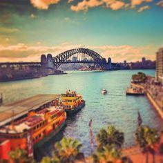 Sydney  #Praktika | Projekte | #Freiwilligenabeit in Australien unter www.academical-travels.de