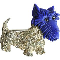 This rare Coro Scottie Dog pin is a real collector's piece. The combination of the deep blue (almost purple) carved celluloid Scottie dog head and