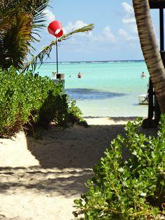 #Bonaire beach/The Windsurf Place @ Sorobon.