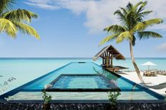 Breathtaking Villa Retreat In Maldives. proud to say Maldives is my my home country. ♥ do come visit Maldives. sunny side of life ; Oh The Places You'll Go, Places To Travel, Travel Destinations, Places To Visit, Holiday Destinations, Holiday Places, Amazing Swimming Pools, Cool Pools, Dream Vacations