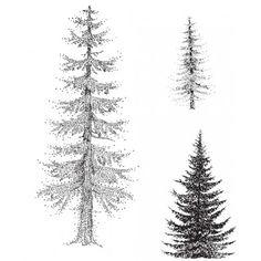 Rubbernecker 3 Pine Tree Set