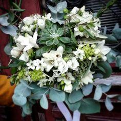 Bride Bouquets, Plants, Bridal Bouquets, Plant, Planets