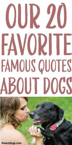 Our 20 Favorite Famous Quotes About Dogs