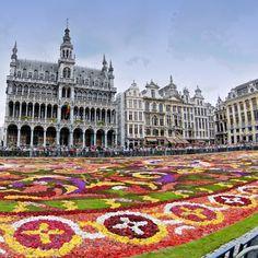 *** Tapis de fleurs de la Grand Place de Bruxelles ***