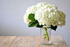 Hydrangeas.  So simple yet so elegant.