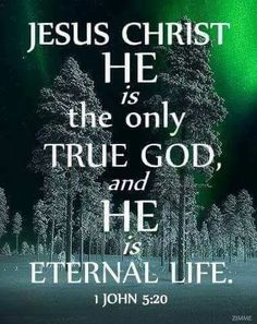 1 John (TLB) - And we know that Christ, God's Son, has come to help us understand and find the true God. And now we are in God because we are in Jesus Christ His Son, who is the only true God; and He is eternal Life. Scripture Verses, Bible Verses Quotes, Bible Scriptures, Lord And Savior, God Jesus, King Jesus, Foto Art, Faith In God, Names Of Jesus