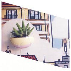 Cactus animado! #cactusysuculentas #cactus #cacti #cactuslover #cactilove #suculentas #succulents #succulove #deco #decor #market #malasaña #dosdemayo #dosde #plazadosdemayo #madrid #chamacereussilvestrii #chamacereus