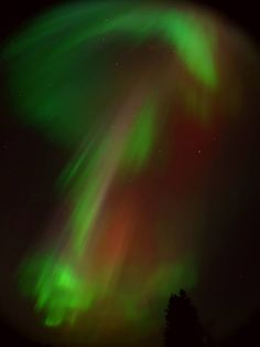 The auroras were pretty epic tonight! This was at Wilkie Saskatchewan Canada. What an unforgettable show! Saskatchewan Canada, Winter Sky, Skylights, Tornados, Night Skies, Astronomy, Natural Beauty, Northern Lights, Beautiful Pictures